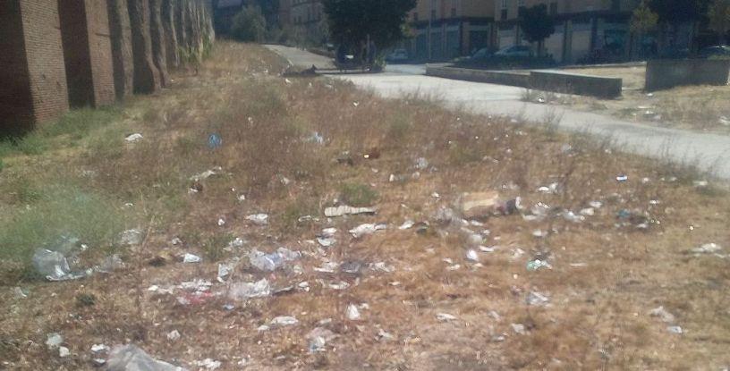 Parco Sangalli dopo la pulizia - Foto di Danilo Della Canfora